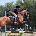 accessoire passionnés chevaux